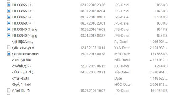 Normale Bilder + Kuriose Dateien - (Computer, Internet, USB)