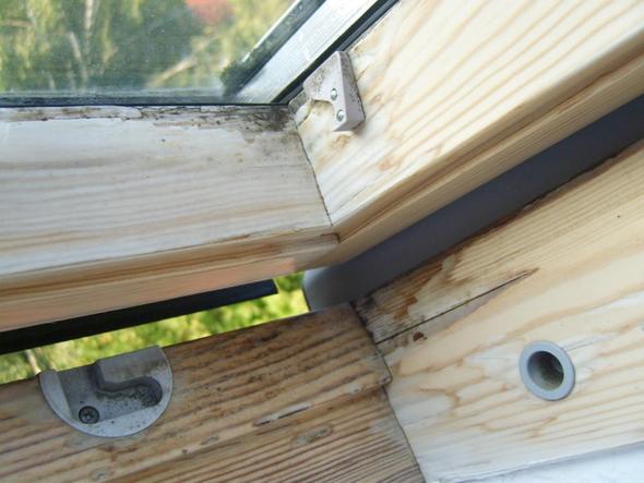 Zustand Dachgeschoss-Fenster  - (Haus, Reparatur, Holz)