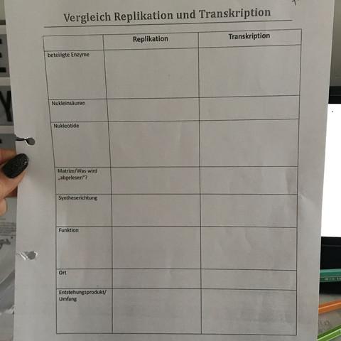 Vergleich Replikation und Transkription? (Biologie)