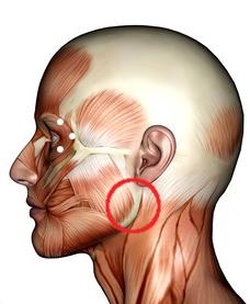 Verhärtung Druckgefühl am Kiefer unter dem Ohr? (Druck, kinn)