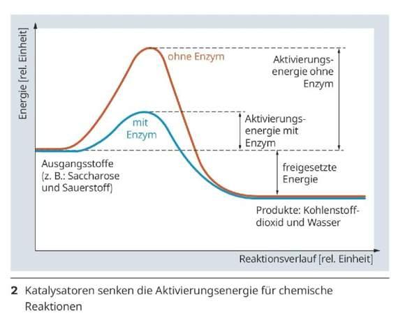 Verlauf einer chemischen Reaktion beschreiben?
