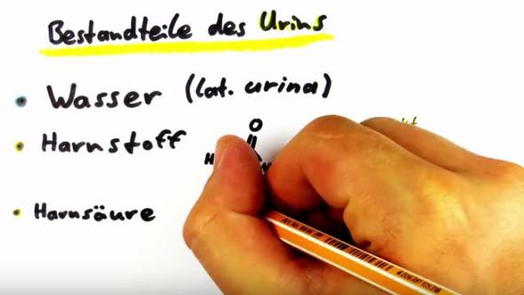 Handaufnahme - (Youtube, Video, Videobearbeitung)