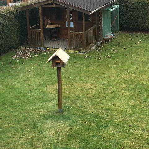 Vögel nehmen Vogelhaus nicht an?