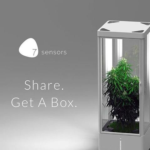 vollautomatische growbox cannabis. Black Bedroom Furniture Sets. Home Design Ideas
