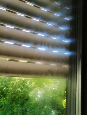 - (Wohnung, Vermieter, Fenster)