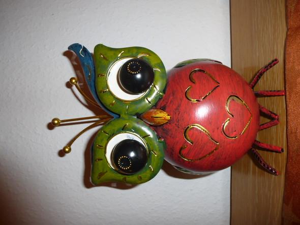 Foto des Vogels - (Wohnung, Kunst, Dekoration)
