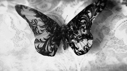 Schmetterlings - (Film, Bilder, gif)