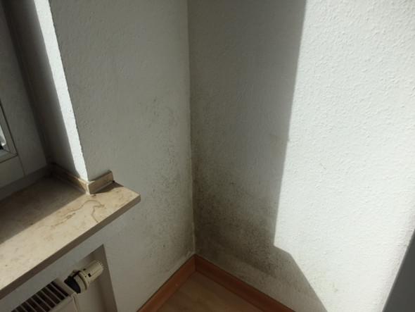 vorgehen schimmel im schlafzimmer luftfeuchtigkeit schimmelbefall. Black Bedroom Furniture Sets. Home Design Ideas