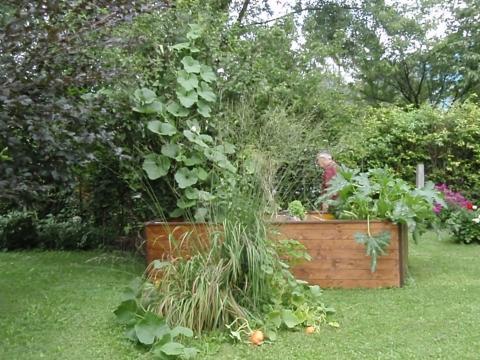 wann soll kann ich mein hochbeet mit kompost auff llen garten. Black Bedroom Furniture Sets. Home Design Ideas