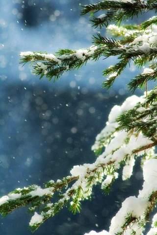 Wann und wo habt ihr zuletzt mal einen Schneemann gebaut oder eine Schneeballschlacht mitgemacht?