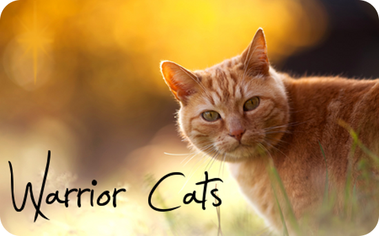 Warrior Cats Soundtrack
