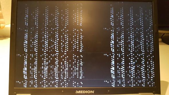 Mein Bildschirm Flackert
