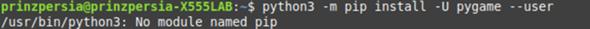Warum funktioniert der Python pip Command unter Linux Mint nicht?