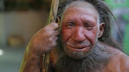 Neandertaler - (Unterschied, Rasse, Volk)