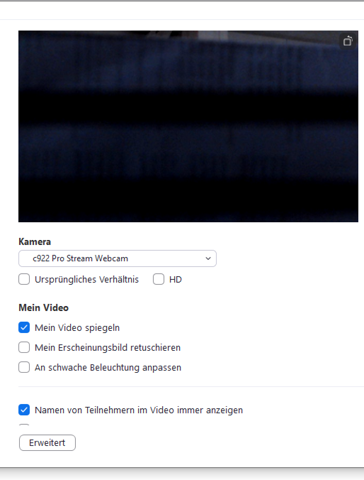Warum hat meine Webcam in Zoom schwarze Streifen?