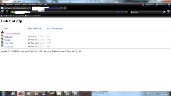 das bild zeigt, was ich sehe, doch ich will meine Seite sehen  - (PC, Internet, Website)