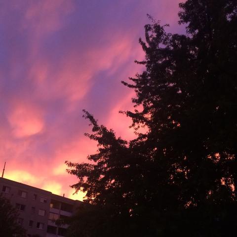 Warum ist der himmel so rosa? (Bild)