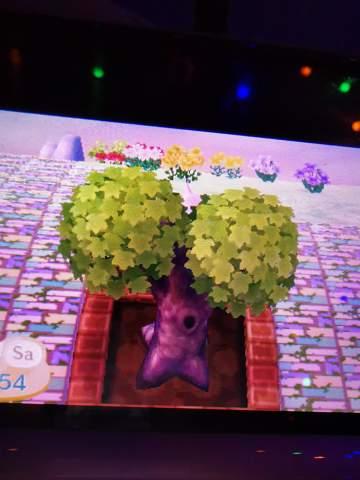 Warum ist mein Baum geschrumpft in Animal Crossing new leaf?