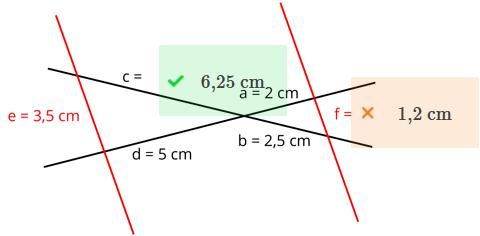 Warum kann ich nicht diese Formel einsetzen (Strahlensätze)?
