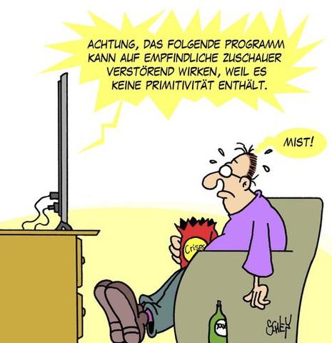 TV - (Computer, Internet, Programm)