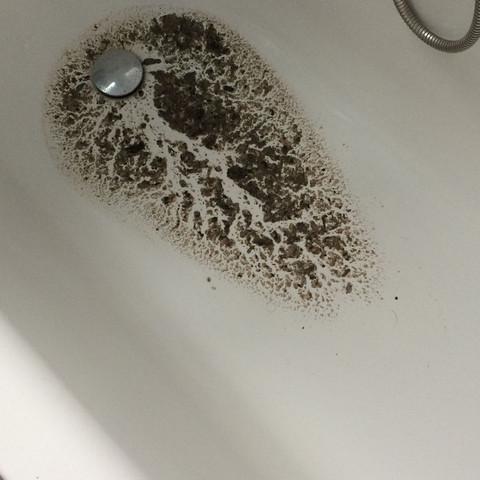 Warum Kommt Komische Flussigkeit Aus Abfluss Geruch Stinken