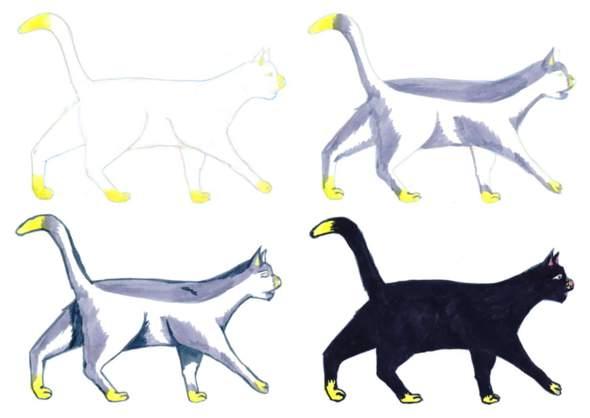 warum laufen katzen auf zehenspitzen?