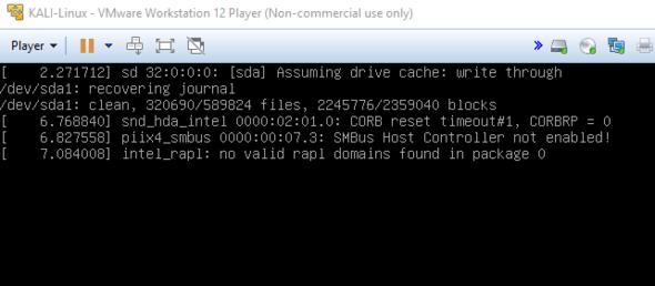 Screenshot vom Ladescreen - (Computer, VMware, kali linux)