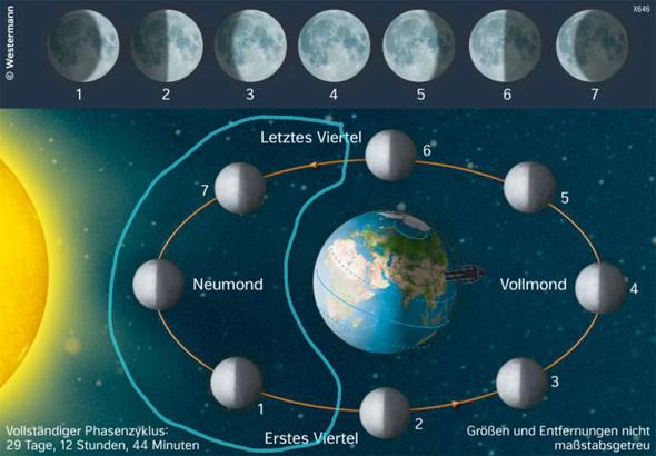 Warum sieht man den Mond zu jeder Zeit im Monat?