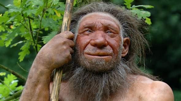 Warum starb der Neandertaler aus?