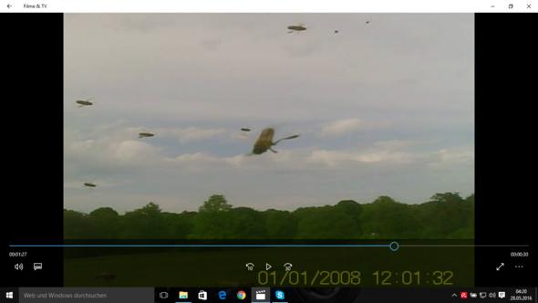 Insektenschwarm um meine Drohne  - (Technik, Physik, Elektronik)