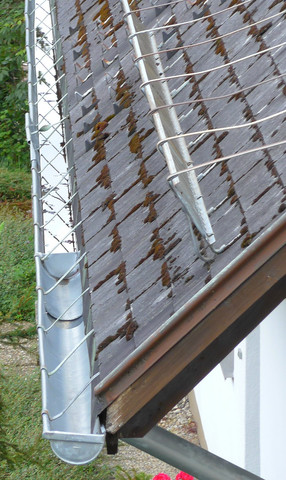 warum werden bleche in dachrinnen eingebaut die den regenwasser ablauf in das fallrohr komplett. Black Bedroom Furniture Sets. Home Design Ideas