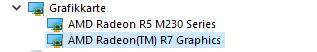 Warum wird meine AMD Grafikkarte immer falsch erkannt?