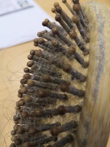 Warum wird meine Haarbürste immer so schnell dreckig?