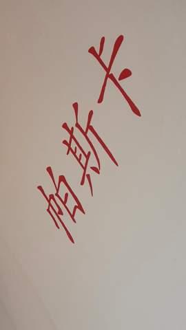 Was bedeuten diese Japanischen/Chinesischen Schriftzeichen?