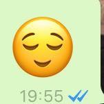 Das ist der Emoji. - (Liebe, Mädchen, Frauen)