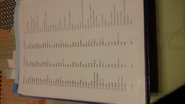 1. Seite - (Sprache, Grammatik, Irregular Verb)
