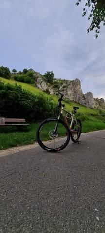 Was bedeutet ltd bei Mountainbikes?