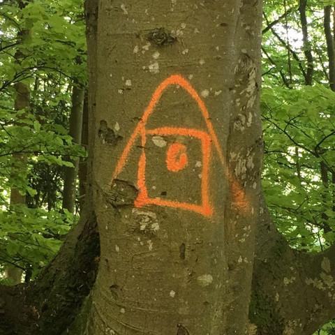 Was besagt das Symbol auf dem Baum?