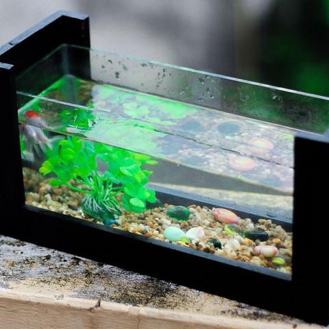 Was braucht so ein Aquarium?