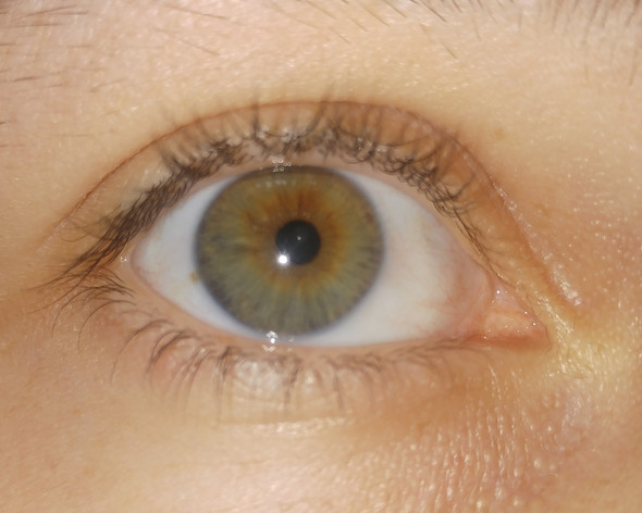 Hazel Augenfarbe