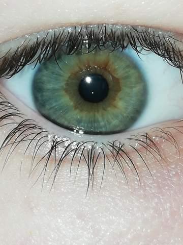 Was für eine Augenfarbe habe ich?