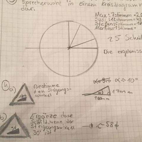 4a.     - (Mathe, Mathematik, Prozent)