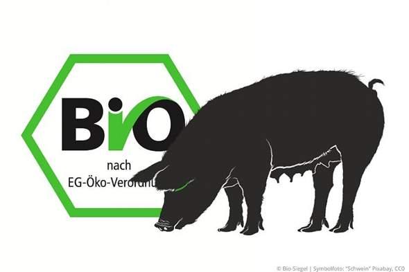 Was haben die Leute gegen Bio?