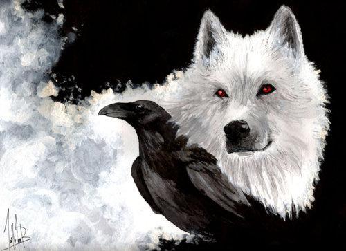 Bild 2 - (Tiere, Bilder, Wallpaper)