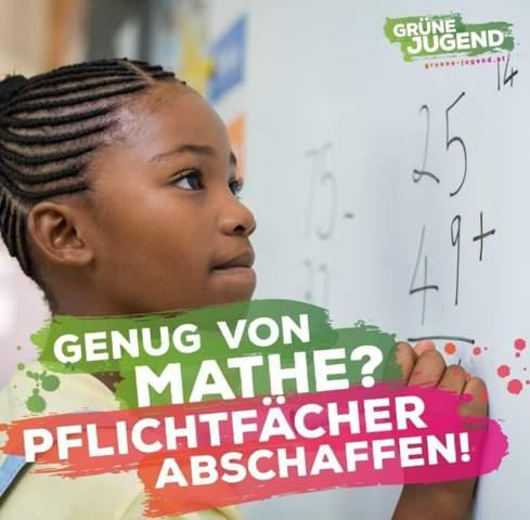 Was haltet Ihr davon, dass die grüne Jugend in Österreich die Pflichtfächer abschaffen will?