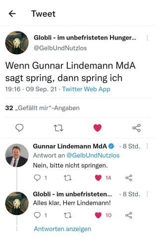 Was haltet Ihr von Gunnar Lindemann?
