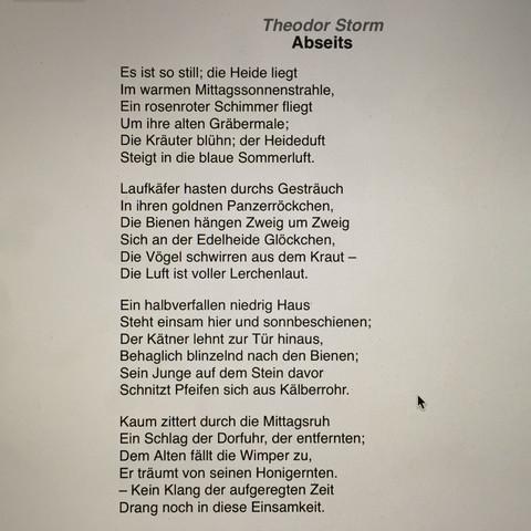 Gedicht von storm