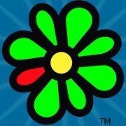 Ich schreibs halt immer bei ICQ! - (Computer, chatten, c-sprache)