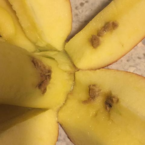 Apfel  - (essen, Apfel)