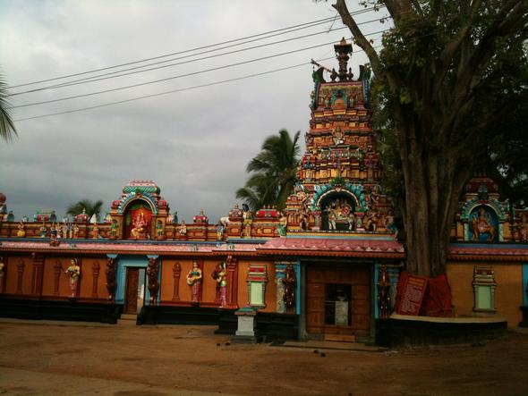 Tempel  - (Rezept, Indien, Kerala)